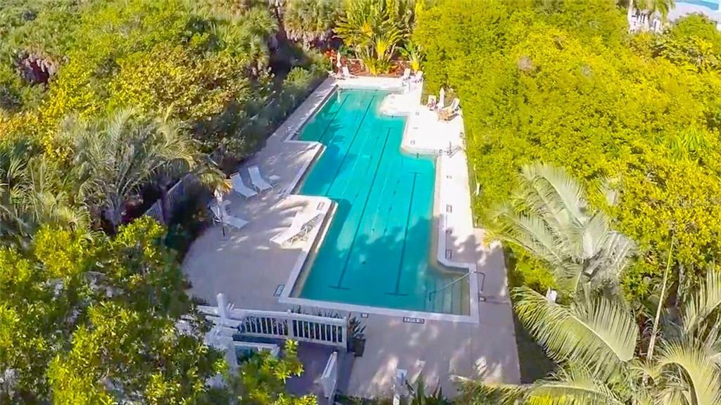 Lap Pool - Single Family Home for sale at 303 Pilot Point Ln, Boca Grande, FL 33921 - MLS Number is D6104303