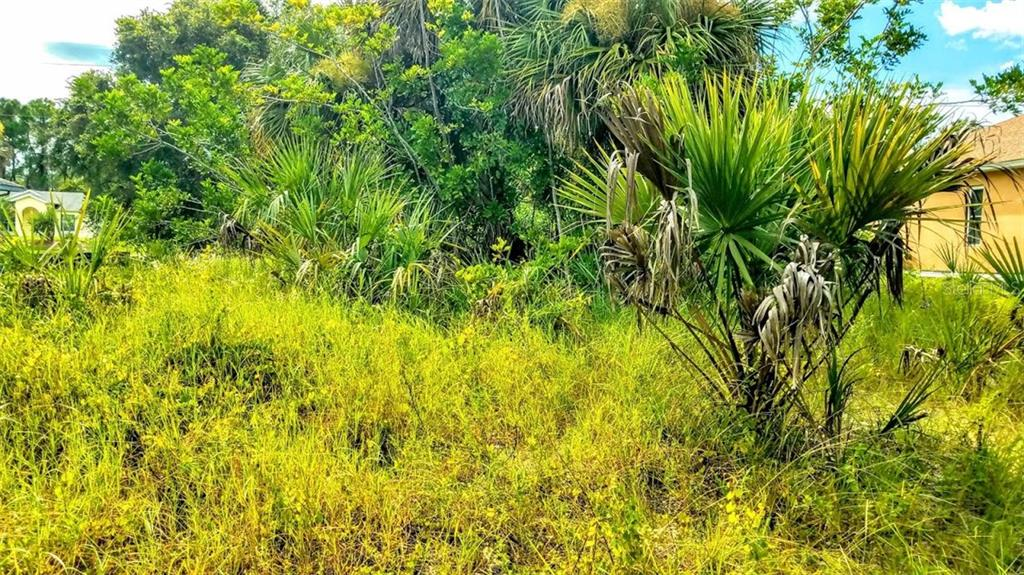 Interior of vacant lot - Vacant Land for sale at 2298 Como St, Port Charlotte, FL 33948 - MLS Number is U8017900