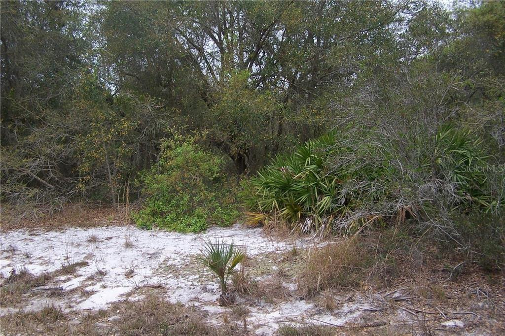 Vacant Land for sale at 55 Dahoon Blvd, Punta Gorda, FL 33982 - MLS Number is C7237204