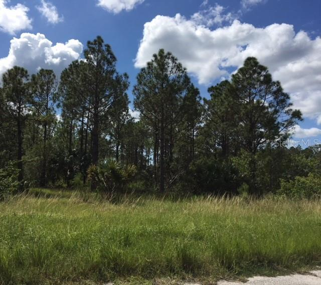 Vacant Land for sale at Inkwood Dr, North Port, FL 34288 - MLS Number is C7403559