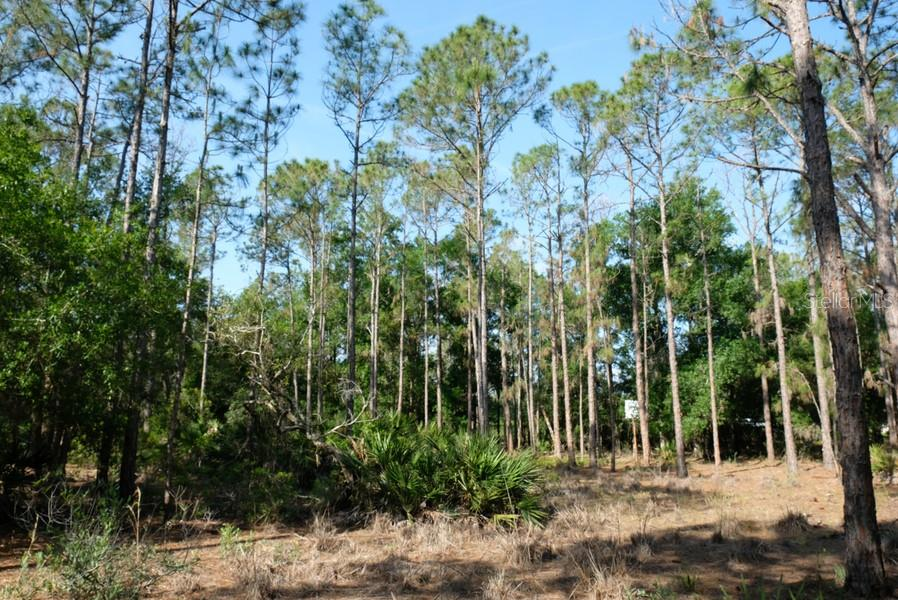 Vacant Land for sale at 7406 221st St E, Bradenton, FL 34211 - MLS Number is A4400781