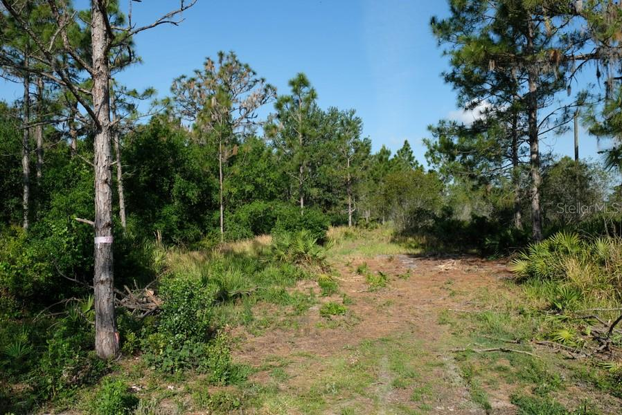 Sellers Disclosures - Vacant Land for sale at 7406 221st St E, Bradenton, FL 34211 - MLS Number is A4400781