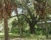Yard/Garden - Vacant Land for sale at 1576 20th St, Sarasota, FL 34234 - MLS Number is A3918346