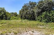 Survey - Vacant Land for sale at 30348 Singletary Rd, Myakka City, FL 34251 - MLS Number is A4446682
