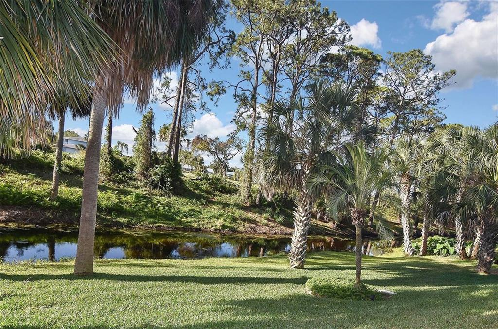Backyard view - Single Family Home for sale at 405 Sunset Dr, Venice, FL 34285 - MLS Number is N5917234