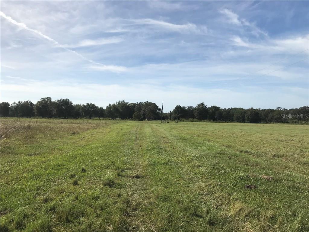 Additional photo for property listing at 28620 State Road 64 E 28620 State Road 64 E Myakka City, Florida,34251 Estados Unidos